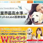 【ガーデン少額短期保険】 申込みフォームリニューアル記念Wプレゼントキャンペーン